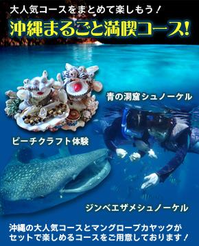 沖縄満喫セットコース