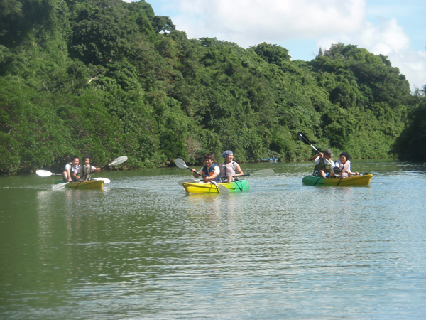 比謝川でのマングローブツアー