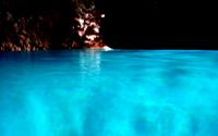 マングローブカヤック+青の洞窟シュノーケルのセットメニュー