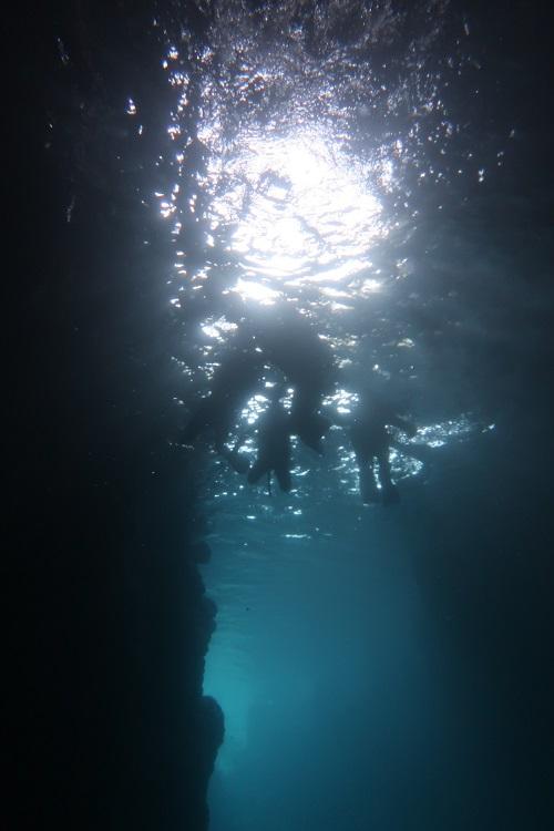 2019321沖縄海うさぎ海あしび_190321_0034.jpg