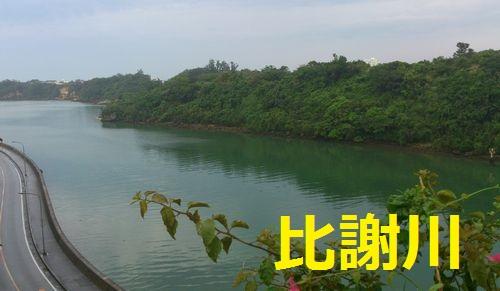 DSC_0229-1.jpg