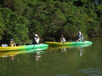 kayak 001.jpg